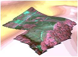 Mappa2